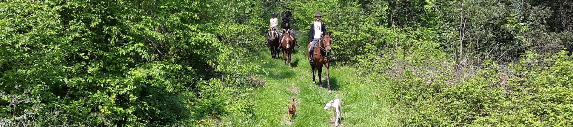 Sport-outdoor-equitazione-finale-ligure-passeggiate-cavallo-liguria-Residenza-Adelaide-002