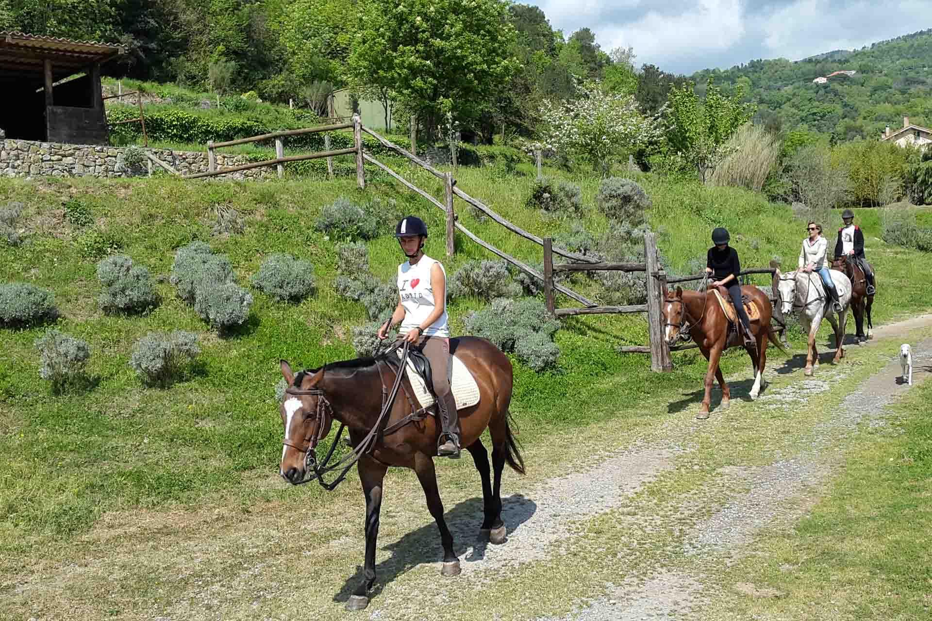 Sport-outdoor-equitazione-finale-ligure-passeggiate-cavallo-liguria-Residenza-Adelaide-004