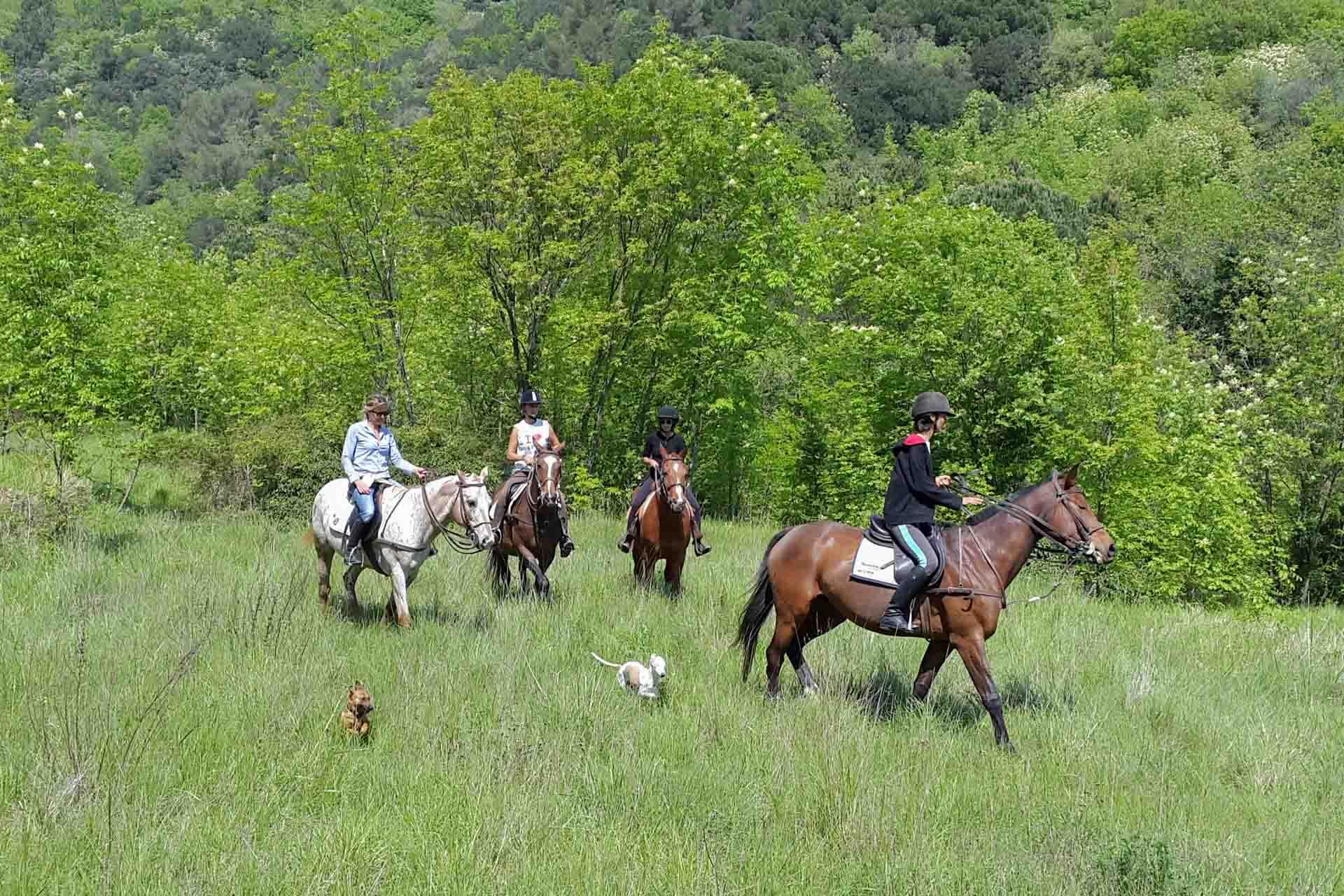 Sport-outdoor-equitazione-finale-ligure-passeggiate-cavallo-liguria-Residenza-Adelaide-005