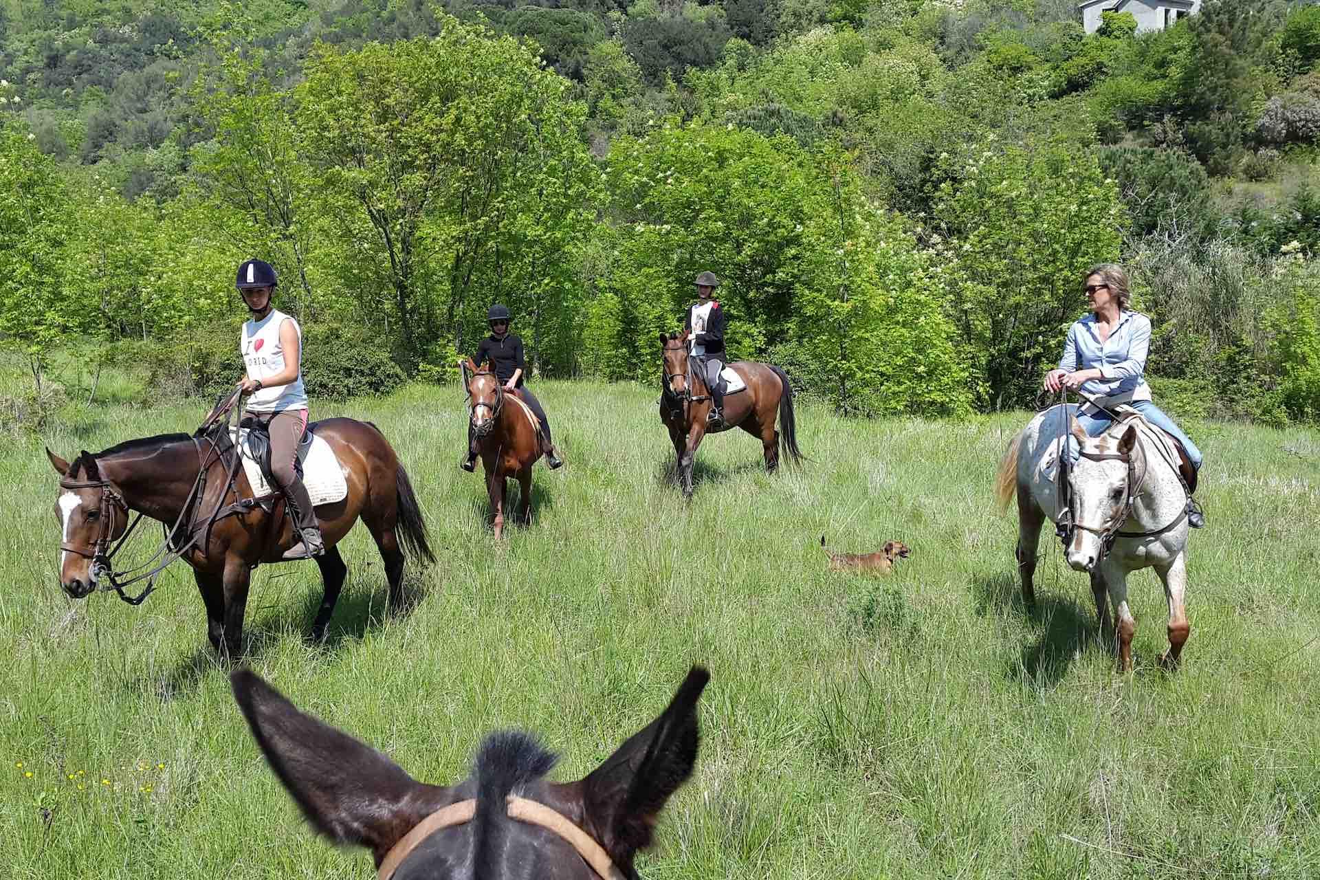 Sport-outdoor-equitazione-finale-ligure-passeggiate-cavallo-liguria-Residenza-Adelaide-007